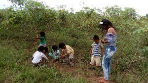 20 MOPI - UCA Brisas Encuentros tradicionales con niños y niñas. Actividad conociendo nuestro conuco, Resguardo Wacoyo