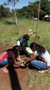 44 MOPI -Comunidad Matapalito Encuentro comunitario Siembra de jadín para la UCA, Resguardo Wacoyo