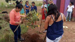 47 MOPI -Comunidad Matapalito Encuentro comunitario_Siembra de jadín para la UCA, Resguardo Wacoyo