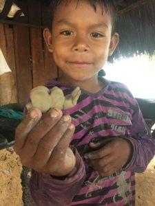 Comunidad Remanzo, reconocimiento de la importancia de la fauna del territorio, Resguardo Vencedor